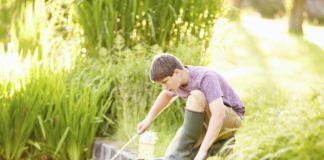Sind Teichfilter wichtig für den Gartenteich?
